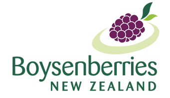 Boysenberries New Zealand | New Zealand Boysenberries